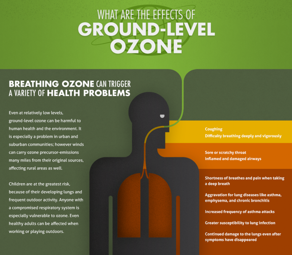 Ozone Health Effects Infographic